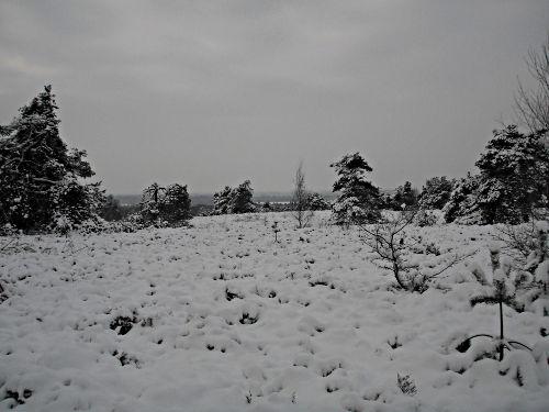 winter 2010 Holterberg